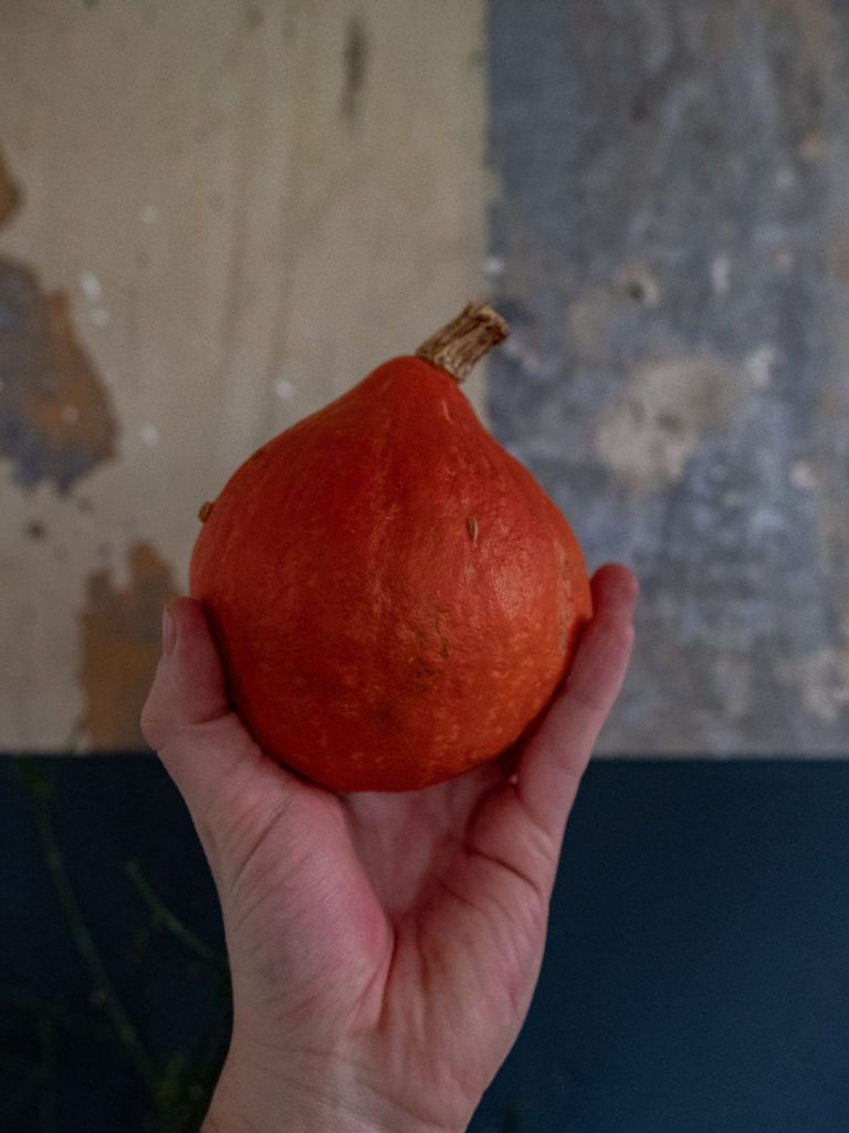 Rezept Focaccia mit Kürbis, Rote Beete und Apfel, Hokkaido_1