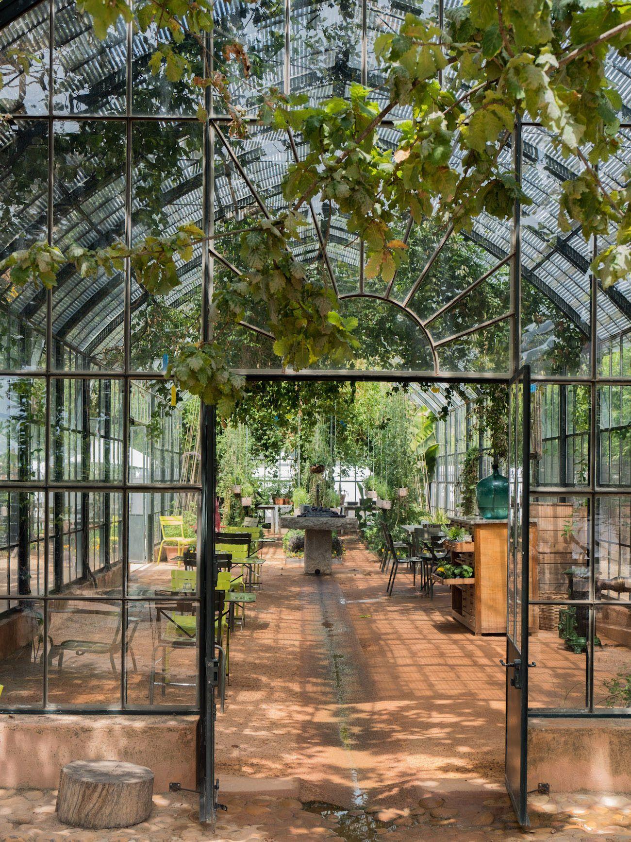 Weinguide Stellenbosch, Babylonstoren, Glashaus, Gewächshaus