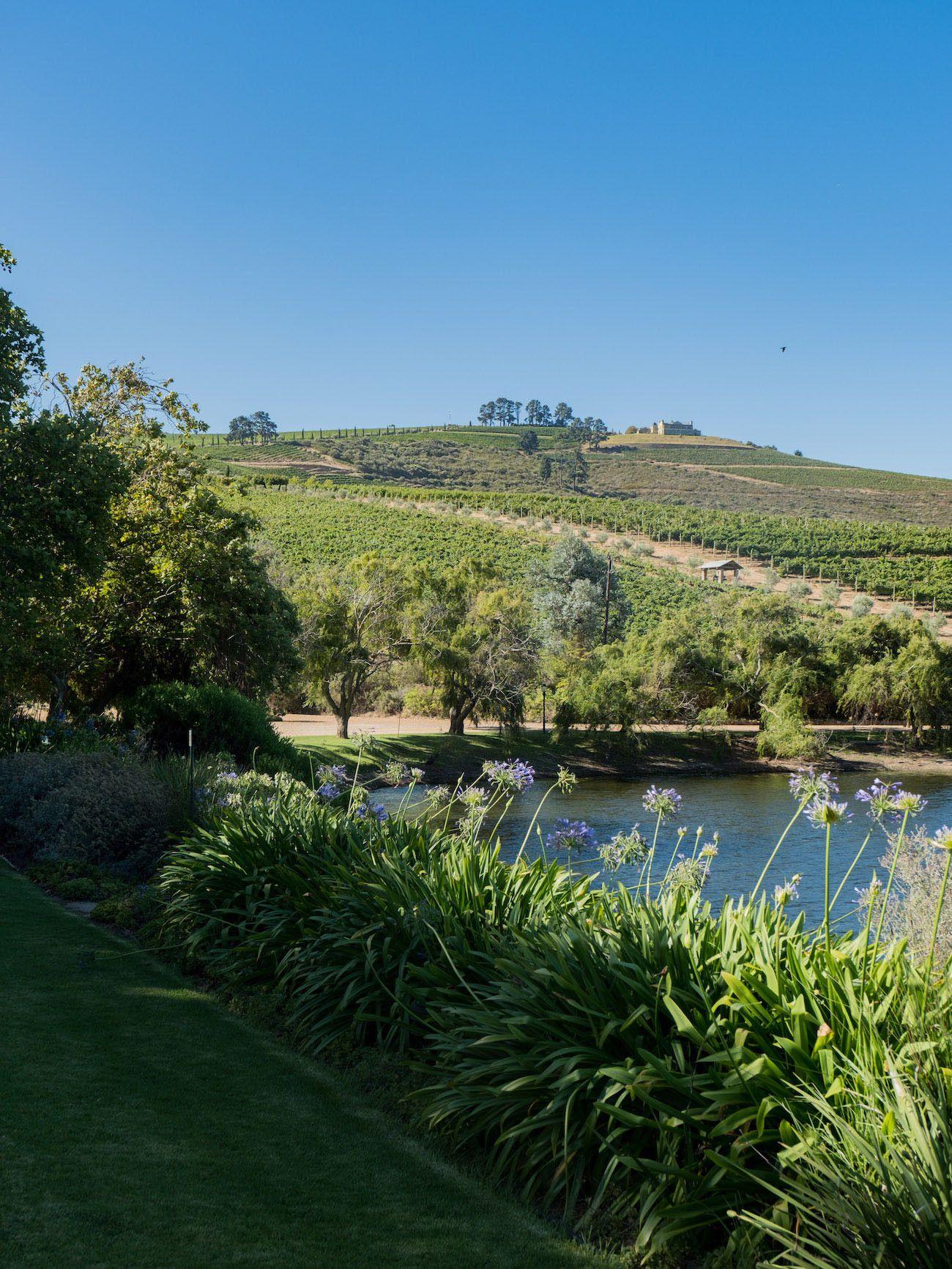 Weinguide Stellenbosch, Jordans, See