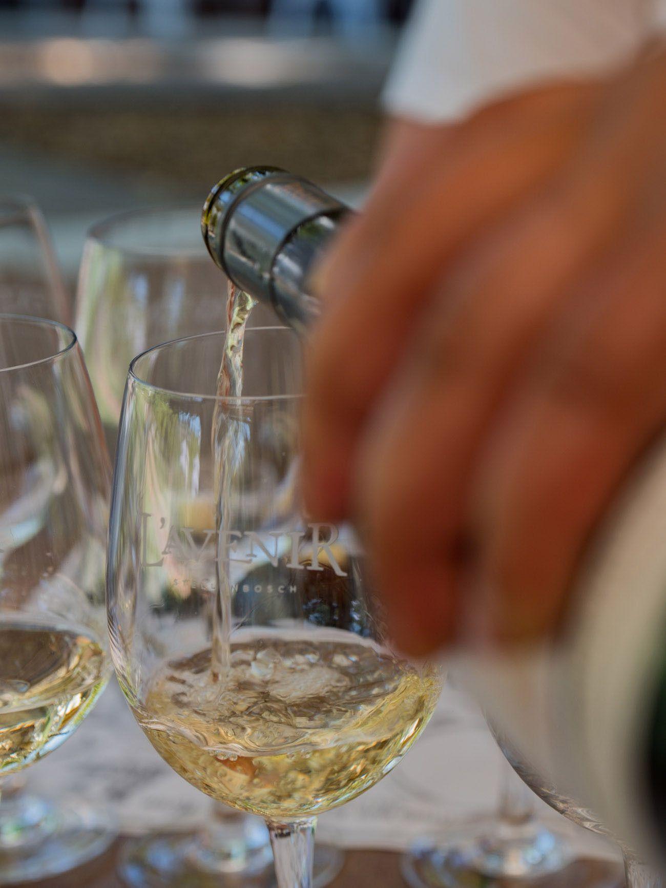 Weinguide Stellenbosch, l'Avenir, Wein, Weinprobe