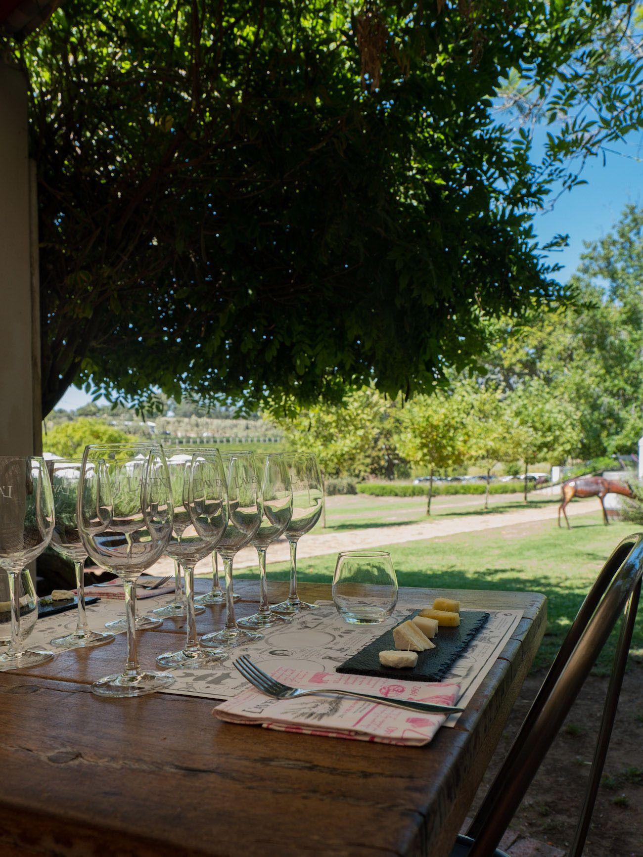 Weinguide Stellenbosch, l'Avenir, Weinprobe