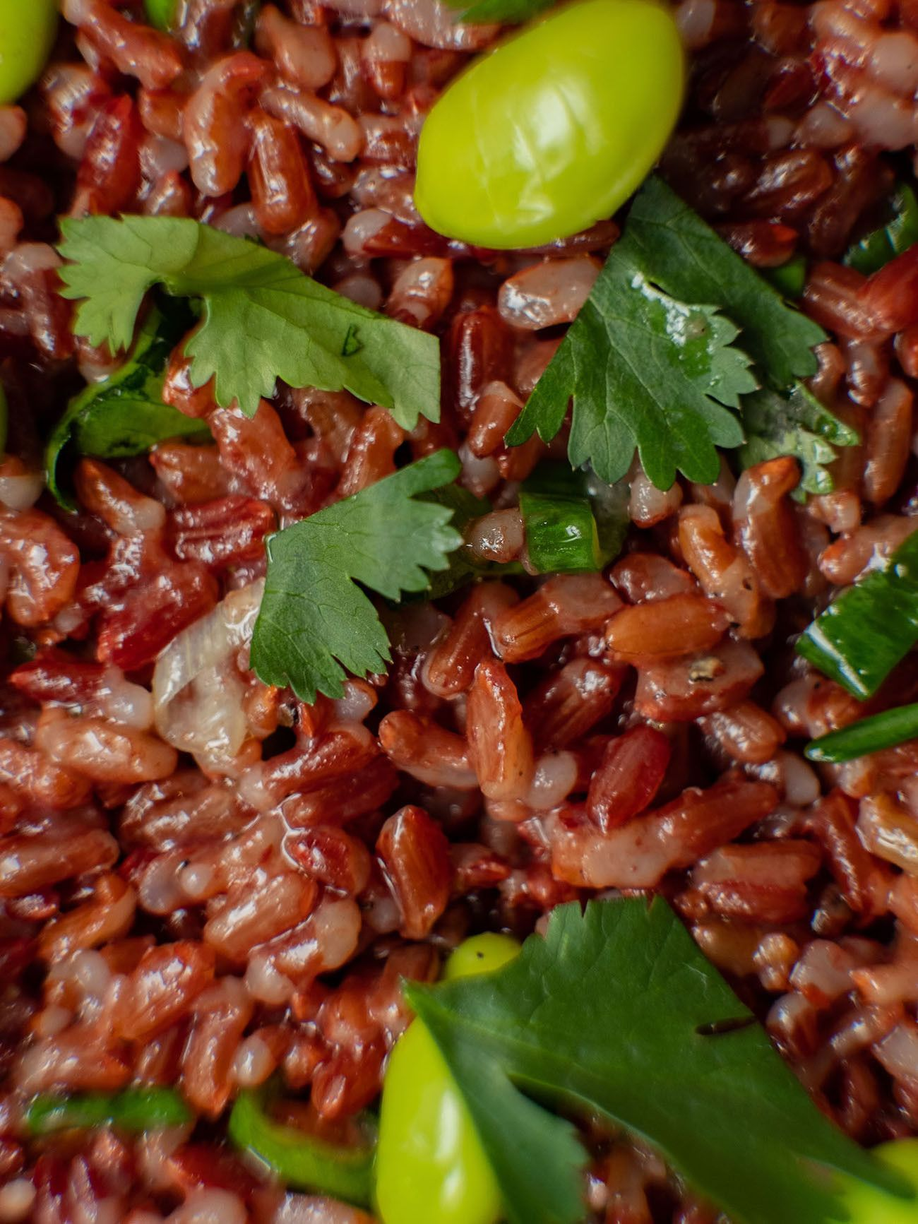 Foodblog About Fuel, Rezept Roter Reissalat mit Edamame und Ahornsirup Lachs, Salat, Koriander