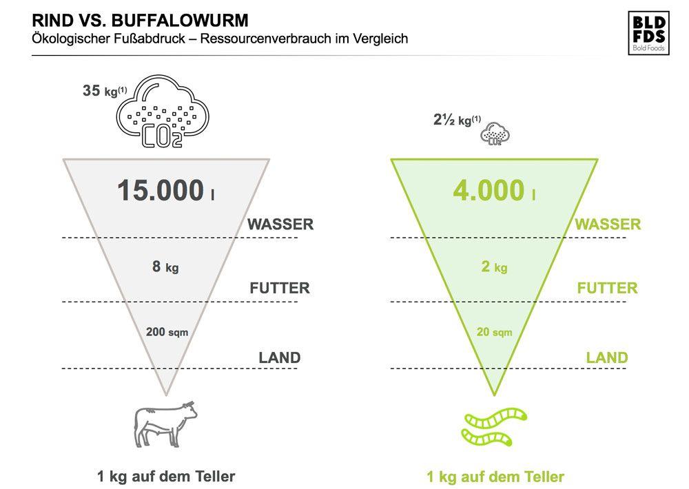 rind-vs-buffalowurm